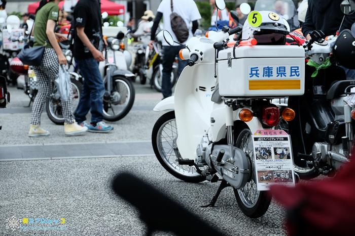 DSCF5097-1.jpg